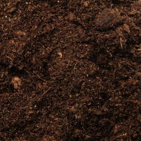 Soil and Potting Compost