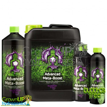 Buddhas Tree MetaBoost - Metabolic Boost Accelerator