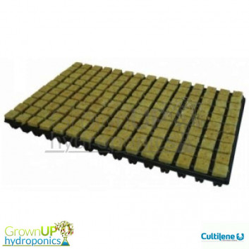Cultilene propagation Cubes 25mm - 150 pieces
