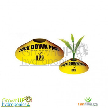 HYP - Lockdown Pads - Insects/Pests