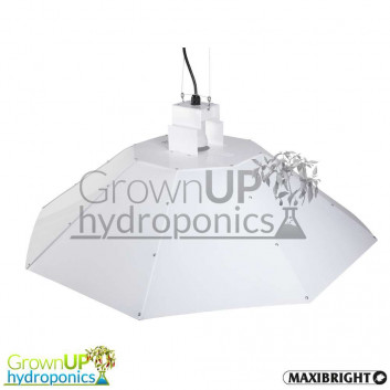 Parabolic Reflector - White - 800mm Diameter for up to 600W