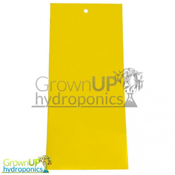 10 x Sticky Yellow Fly/Pest Traps - 25x10cm