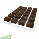 Root Riot Natural Propagation Plugs - Tray of 24