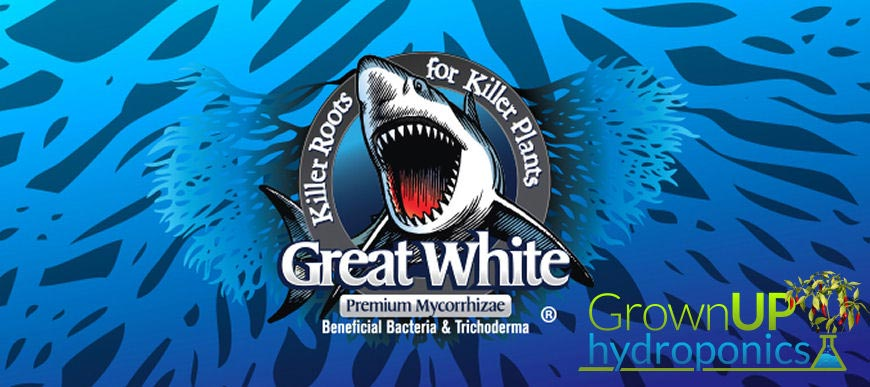 Great White Premium Myco