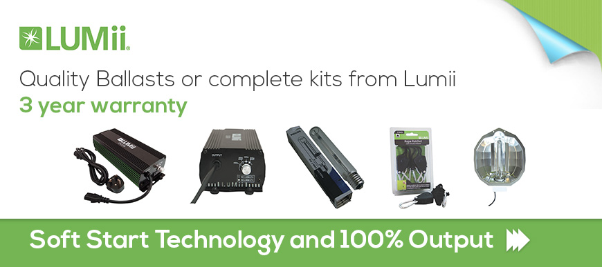 Lumii Ballasts and Kits